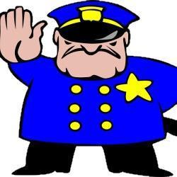 Требования инспекторов ДПС