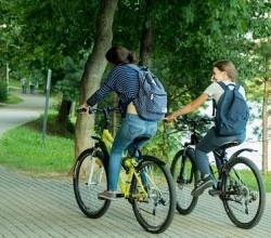 Движение велосипедов во дворах