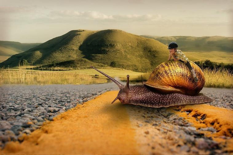 Можно ли ездить слишком медленно по ПДД?